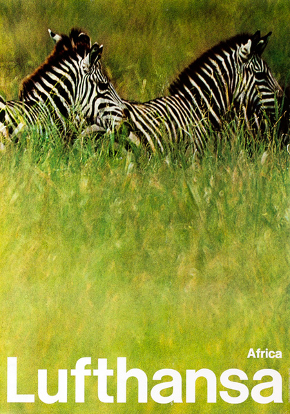 Lufthansa Airlines Original Travel Poster, Africa Zebra