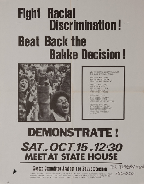 Fight Racial Discrimination, Beat Back the Bakke Decision Original American Civil Rights Poster