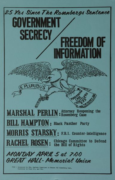 Government Secrecy Freedom of Information Original American Protest Poster