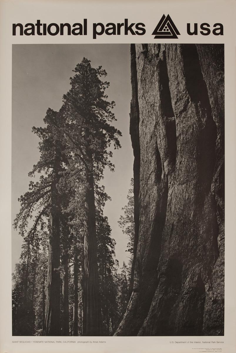 National Parks USA Poster: Giant Sequoias, Yosemite National Park, California