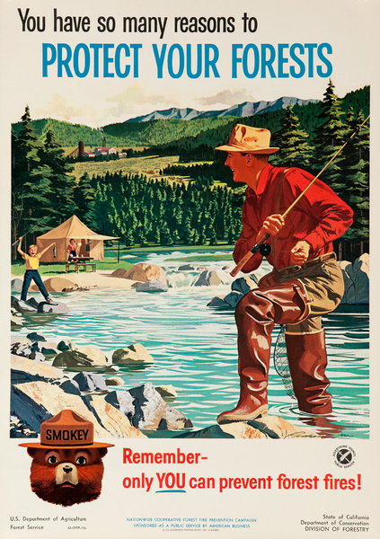 Smokey Bear Fire Prevention Poster You Have So Many Reasons to Protect Your Forests, Flyfisher and Son