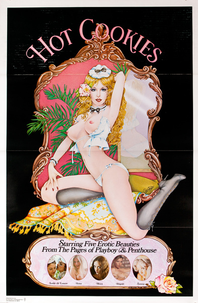 Hot Cookies Original American X Rated Porno Movie Poster