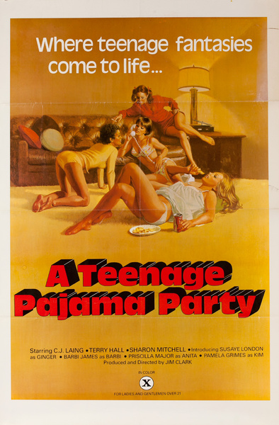 A Teenage Pajama Party Original American X Rated Porno Movie Poster