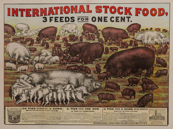 Original International Stock Food Company Poster, 3 Feeds for One Cent