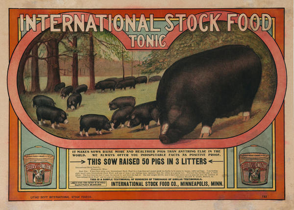 Original International Stock Food Tonic Poster, This Sow Raised 50 Pigs in 3 Litters