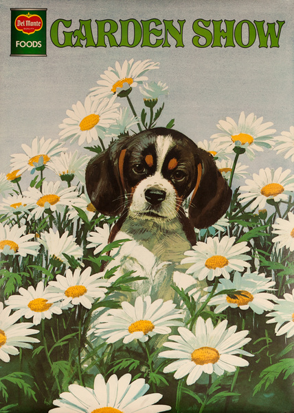 Del Monte Garden Show Original Advertising Poster, Dog with Daisys