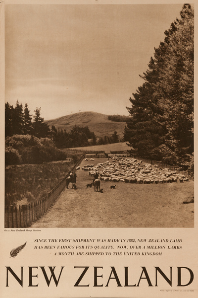 On a New Zealand Sheep Station, Original New Zealand Travel Poster