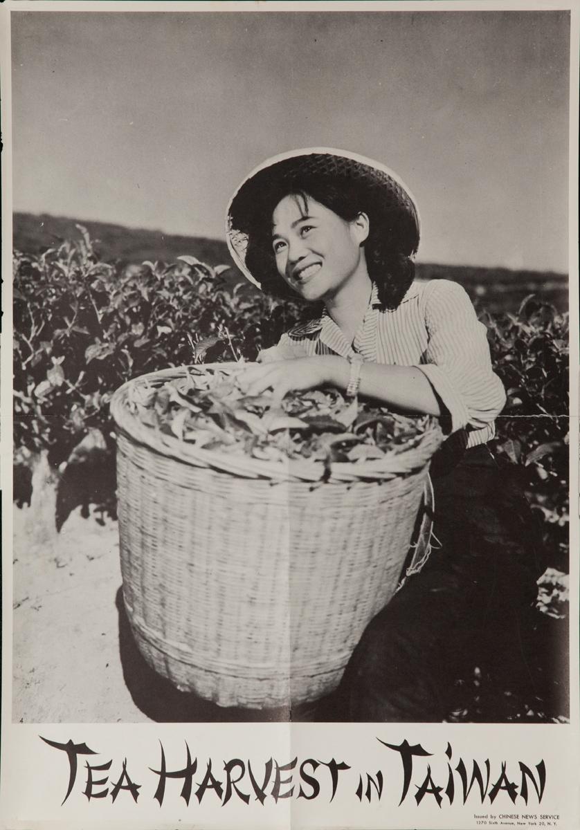 Tea Harvest in Taiwan, Original Travel Poster