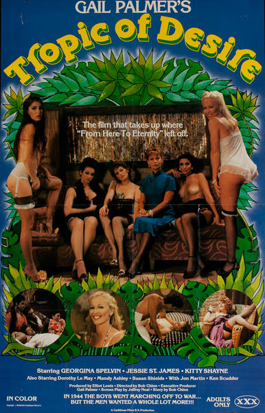 Gail Palmer's Tropic of Desire, Original American X Rated Adult Movie Poster
