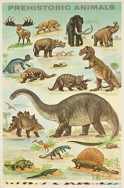 Prehistoric Animals Original Education Poster