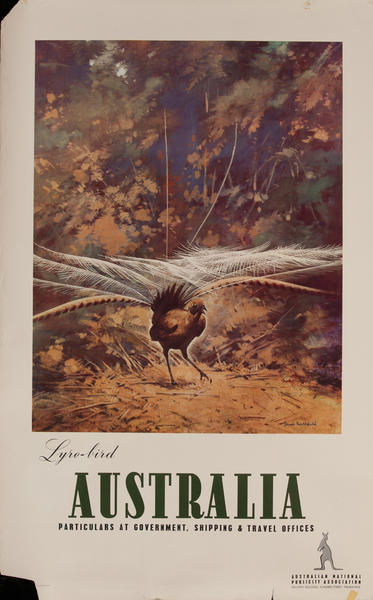Australia Lyre-Bird, Australian National Publicity Association Poster