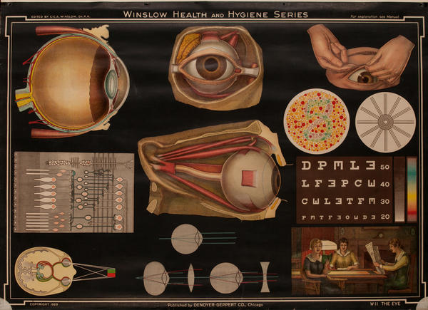 Winslow Health and Hygiene Series Poster, W11 The Eye