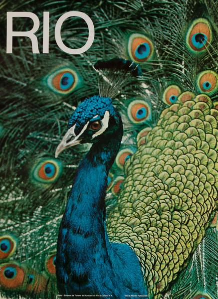 Peacock<br>Rio Brazil Travel Poster