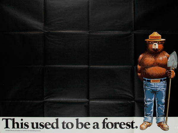 This used to be a forest. Smokey Bear Fight Prevention Poster