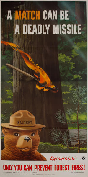 A match can be a deadly missile<br>Remember only you can prevent forest fires!