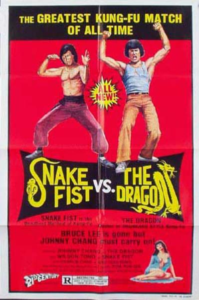 Snake Fist vs the Dragon Original Vintage Kung Fu Movie Poster