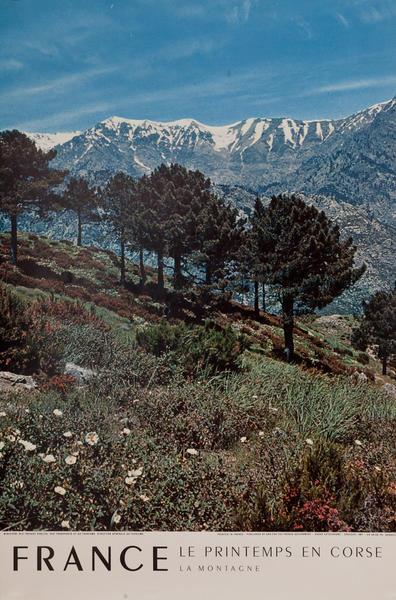France, Le Printemps En Corse, Mountain Scene