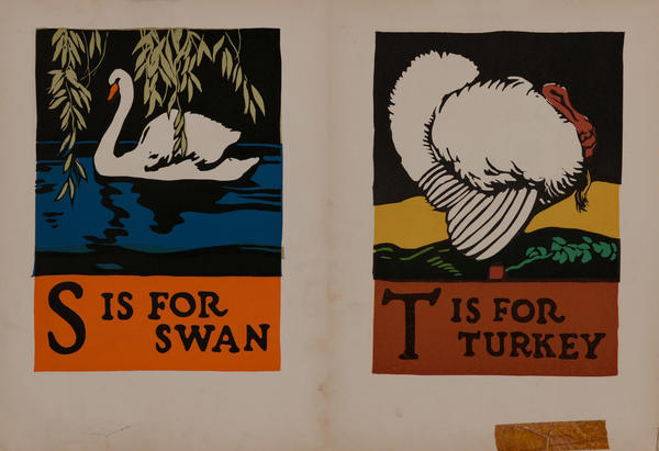 S is for Swan - T is for Turkey
