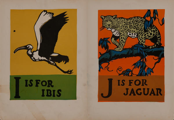 I is for Ibis - J is for Jaguar
