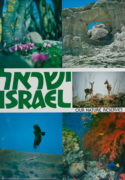Israel Our Nature Preserve, Travel Poster