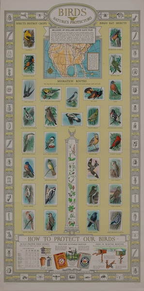 Birds - Nature's Protectors, Arm and Hammer Advertising Poster