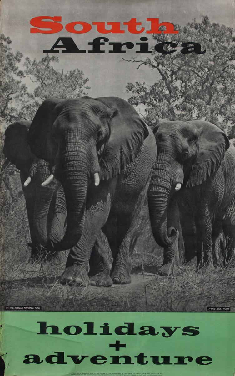 South Africa Holidays + Adventure Elephants