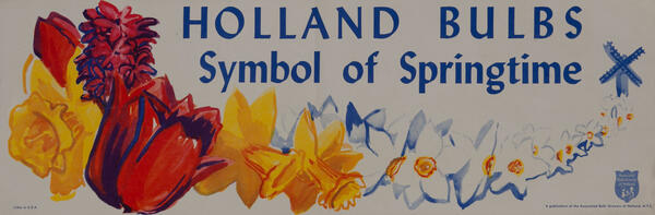 Holland Bulbs Symbol of Springtime - Flower Poster