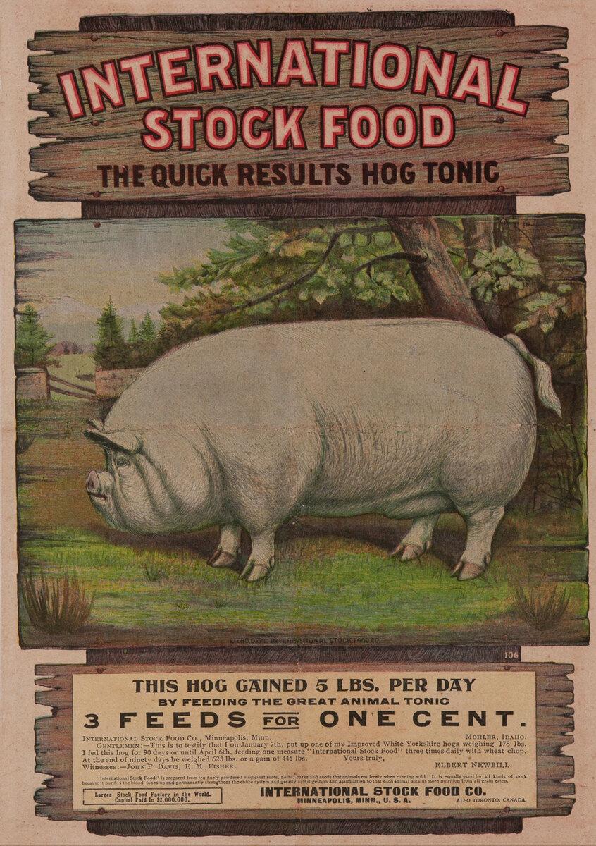 International Stock Food The Quick Result Hog Tonic