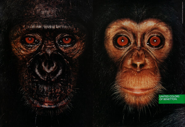 United Colors of Benetton Advertising Poster  Chimps