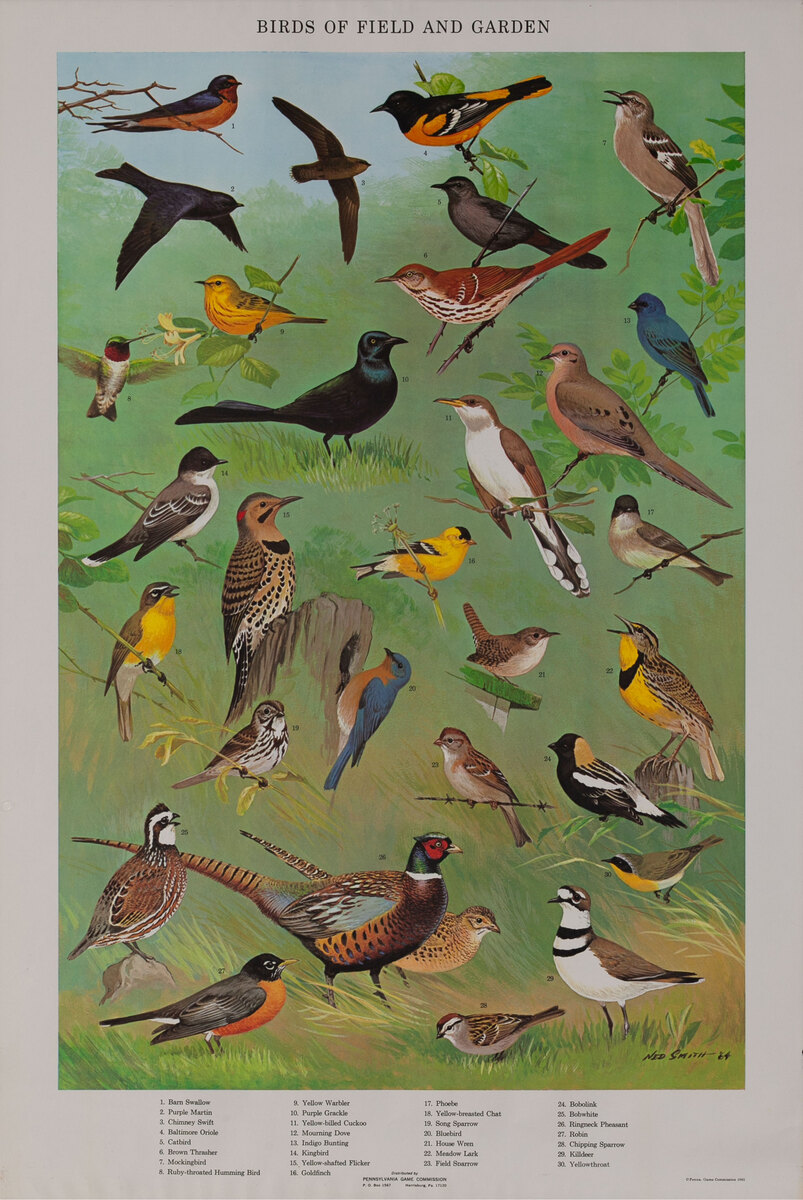 Birds of Field and Garden - Pennsylvania Game Commision Wildlife Poster