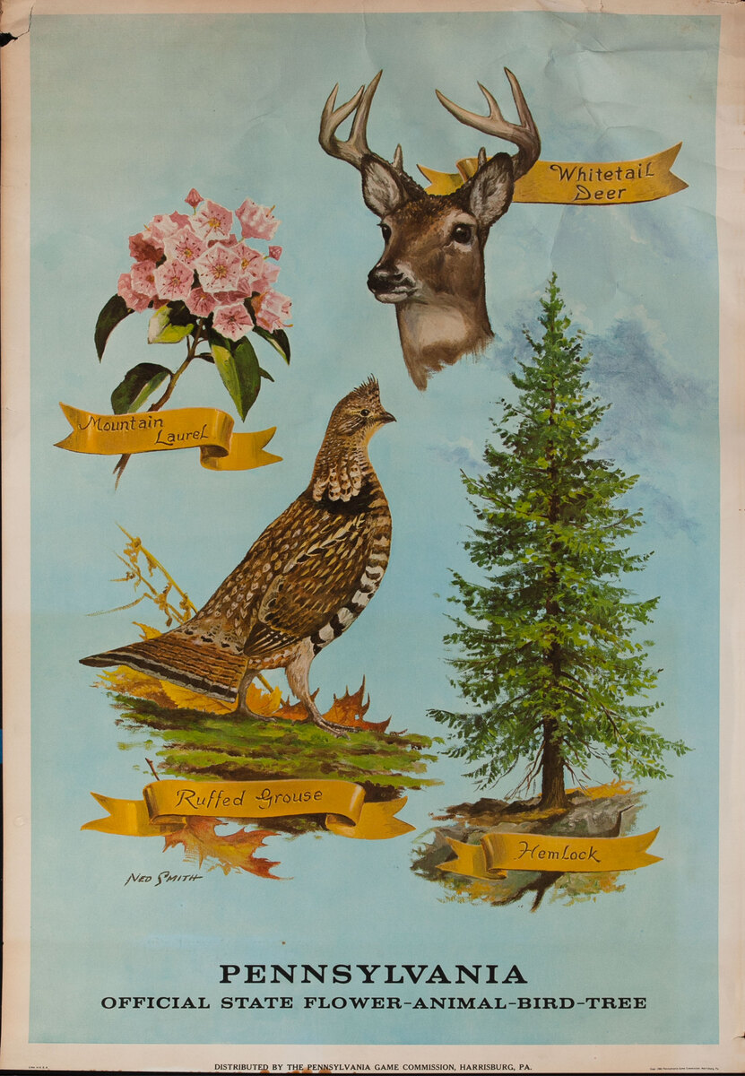 Official State Flower - Animal - Bird - Tree Pennsylvania Game Commision Wildlife Poster