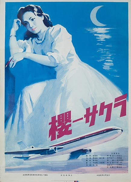 Airplane Horror Original Chinese Movie Poster