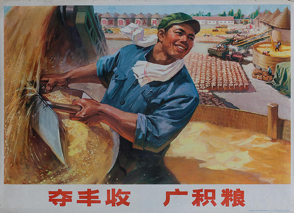 "AAA ""Abundant Harvest"" Original Chinese Cultural Revolution Poster Rice Farmer"