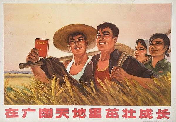 AAA Grow Strongly Under the Broad Sky and Earth Original Chinese Cultural Revolution Poster