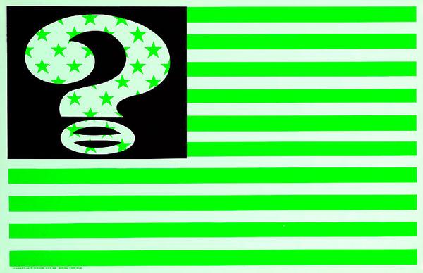Ecology Flag Envioronmental American Flag Original American Protest Poster