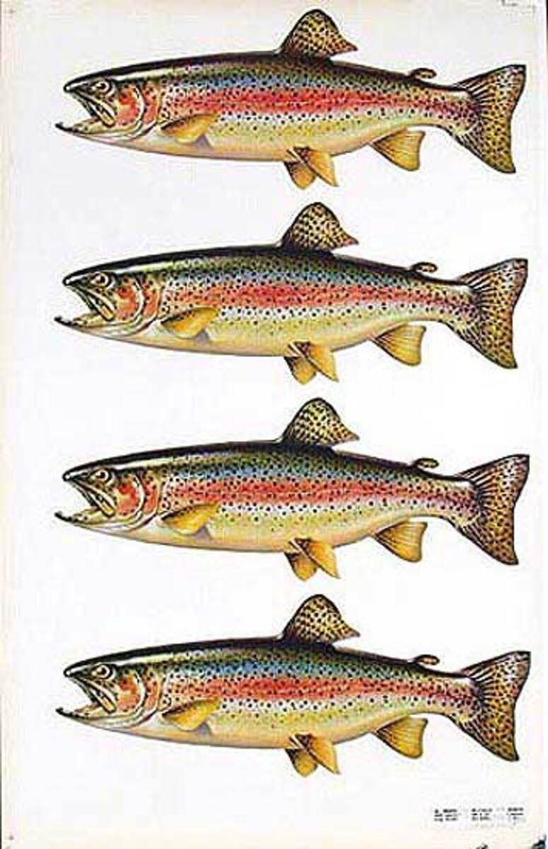 1950s Diner Poster Trout