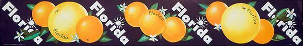 Florida Oranges and Graperfruits  Original American Advertising Poster purple