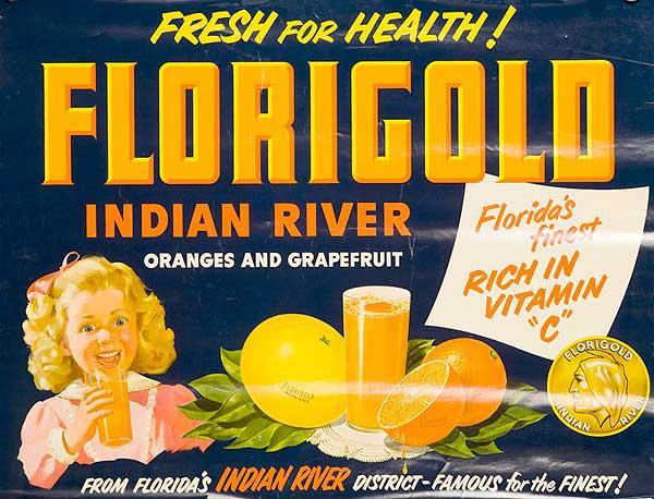 Florida Gold Indian River Grapefruit and Oranges Original American Advertising Poster