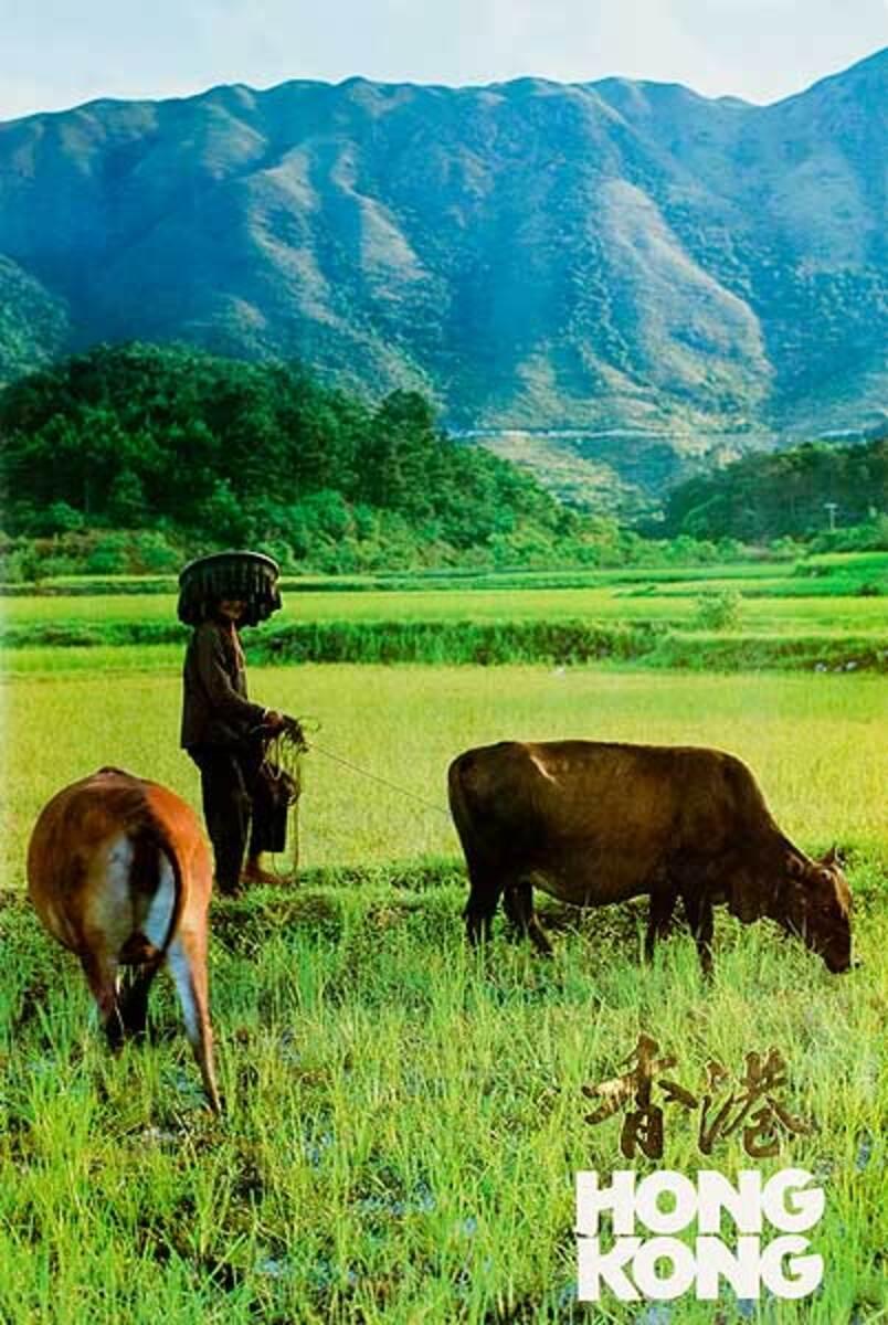 Oxen Original Hong Kong Travel Poster
