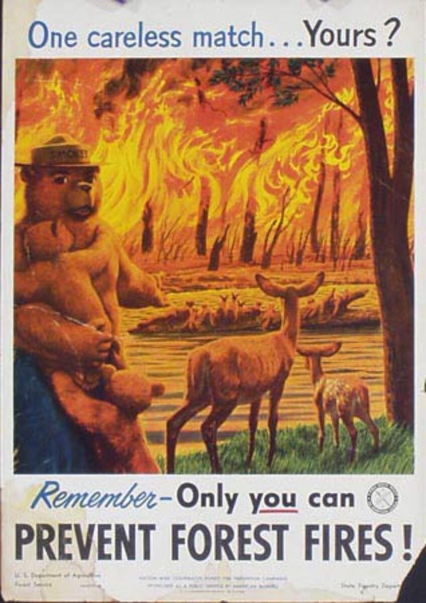 Prevent Forest Fires Original Vintage Smokey Fire Prevention Poster