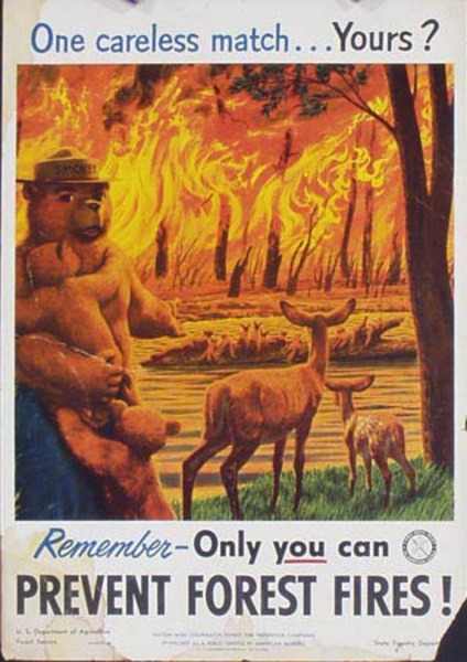 Prevent Forest Fires Original Vintage Smokey Fire Prevention Poster