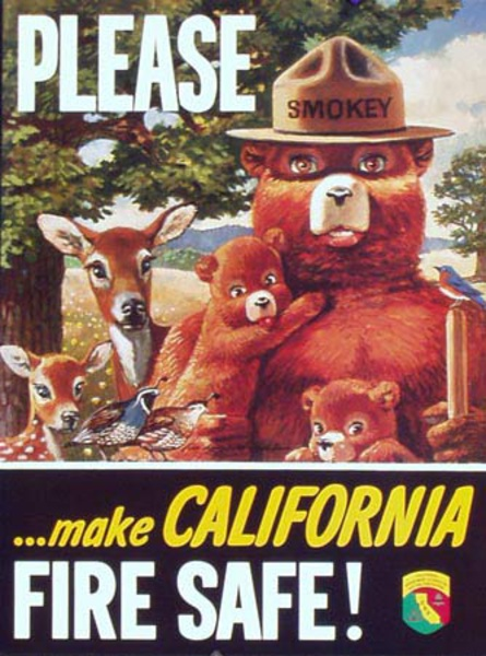 Please Make California Fire Safe Original Vintage Smokey Fire Prevention Poster