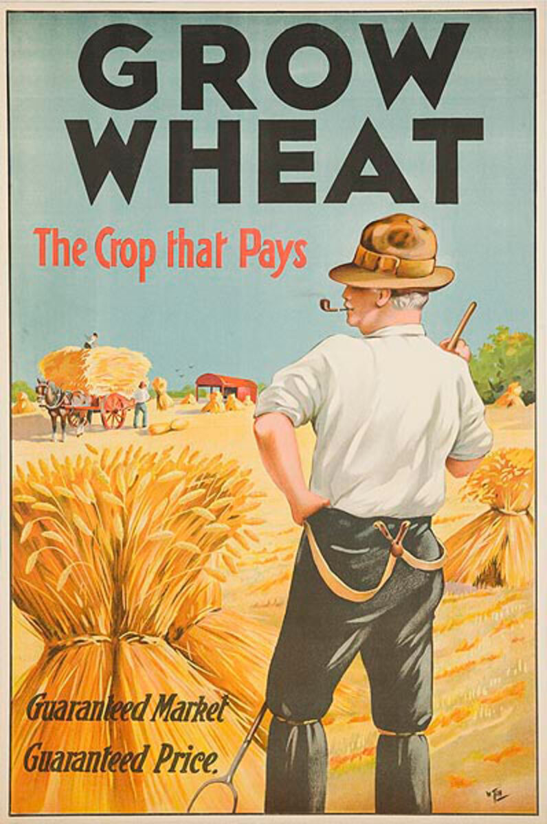 Grow Wheat The Crop That Pays Original Irish Poster