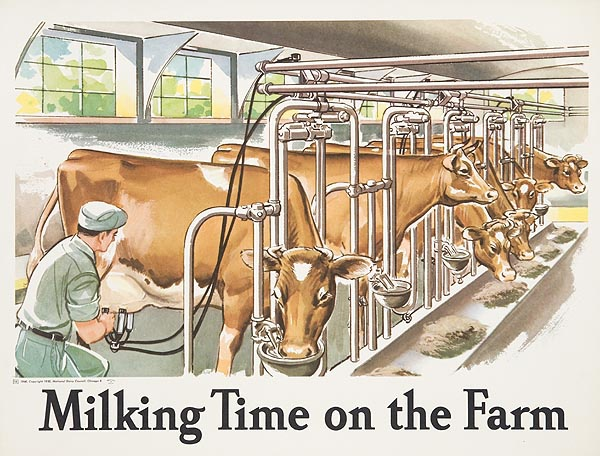 Milking Time On The Farm Original Dairy Council Promotional Poster