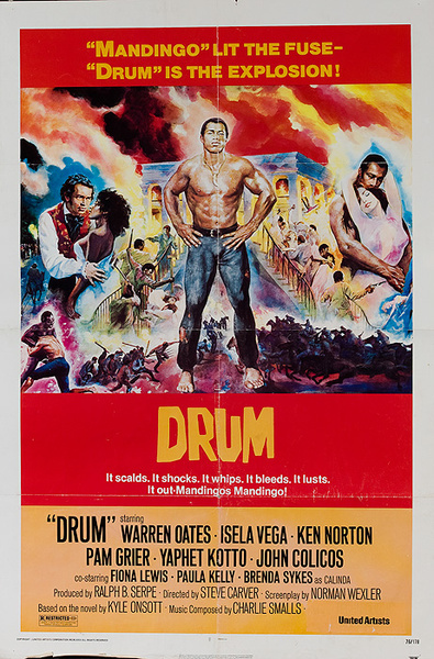 Drum Original American 1 Sheet Movie Poster