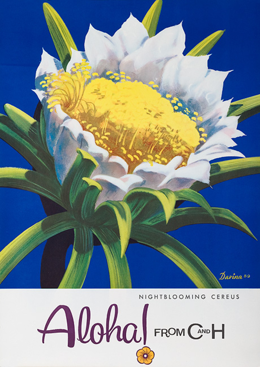 Aloha From  C & H Sugar Original American Advertising Poster Night Blooming Cereus