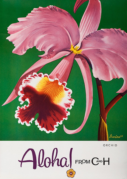 Aloha From  C & H Sugar Original American Advertising Poster Orchid