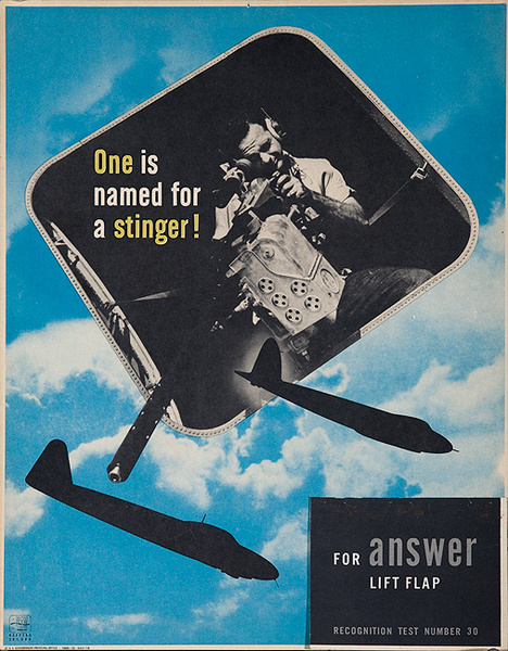 Original WWI Aircraft Identification Poster One is Named for a Stinger