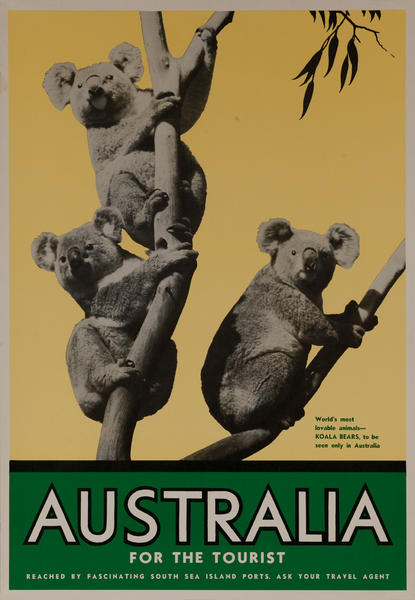 Australia for the Tourist Koala Original Travel Poster