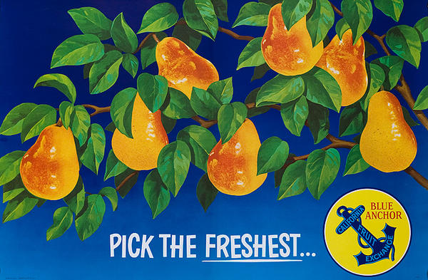 Pick the Freshest Blue Anchor California Pears Advertising Poster